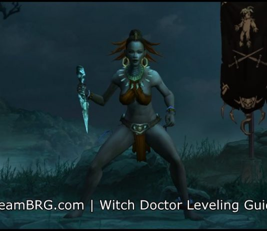 D3 Witch Doctor Leveling Guide S17 | 2 6 5 | Team BRG